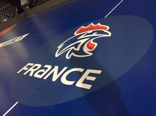Sticker rond central handball - FFHB