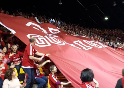 tifo-geant-sig-strasbourg-champions-league
